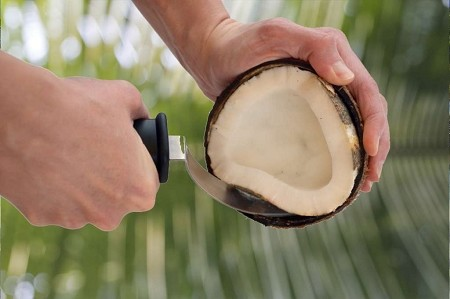 The Coconut Cutter Tool